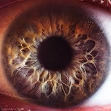 ludzkie oko z bliska